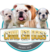 Canil Isa Dogs